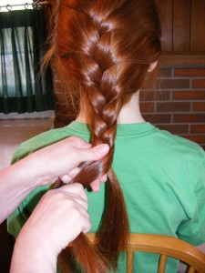 Continuing a Standard Braid
