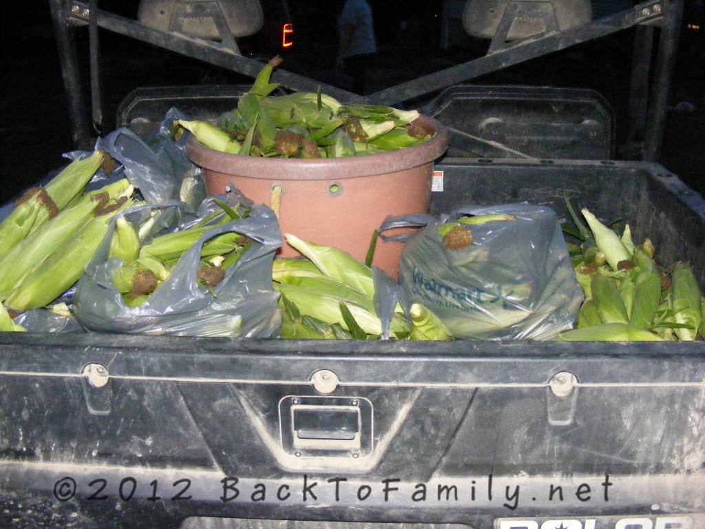 BacktoFamily.net corn from the farm