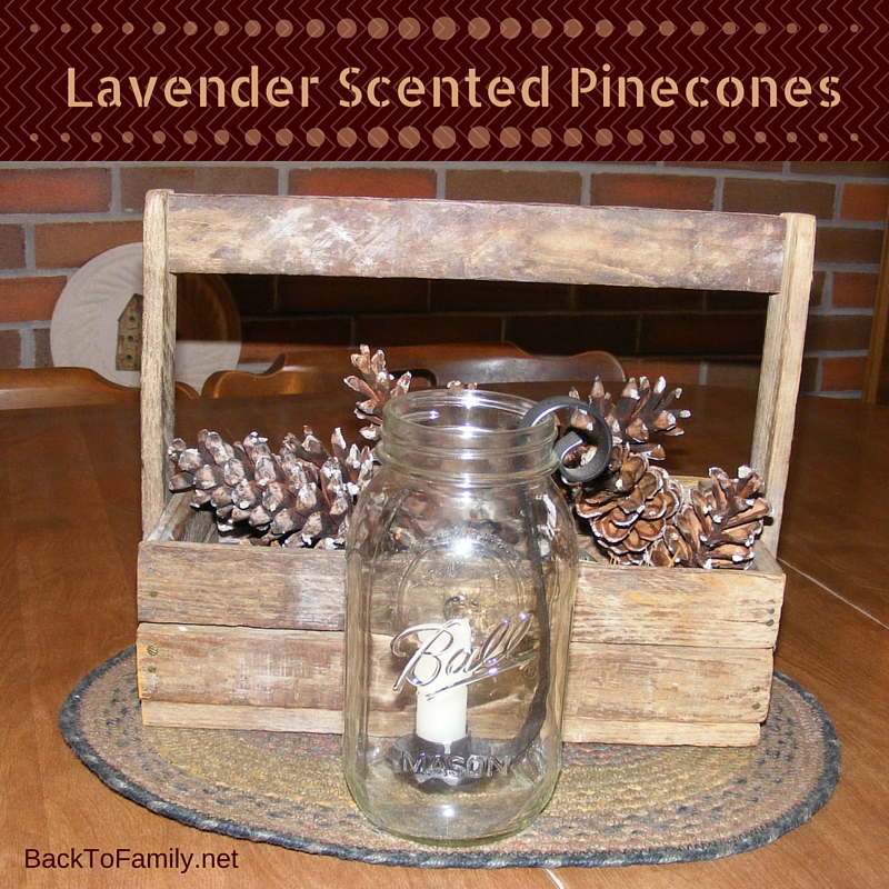 Lavender Scented Pinecones with BackToFamily.net